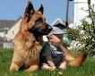 귀여운 아기와 동물