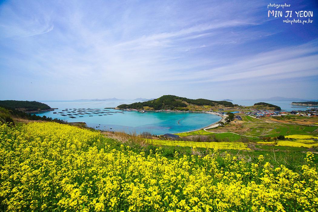 [1박2일 촬영지 청산도] 아름다운 섬, 유채꽃으로 물든 청산도 여행 (청산도 가는법) 청산도 슬로우걷기 축제 2017