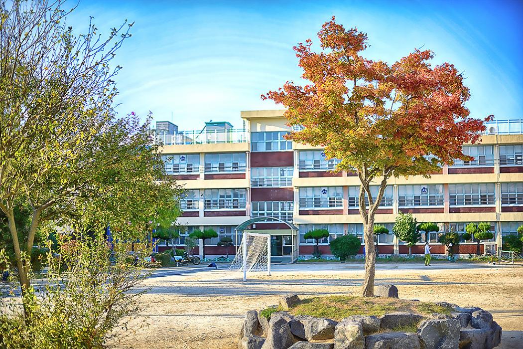 토요일의 짧은 산책171021_봉곡초등학교