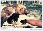 [몽골,테를지국립공원] 매사나이를 만나다