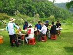 농촌체험 주말농장 - 대구 경북 가나골친환경체험농장 미나리발효액담그기 녹색체험후기(67 산악회)