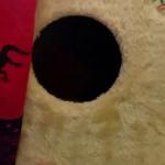 블랙홀? There's a specially designed substance called Vantablack that absorbs all light.: VIDEO