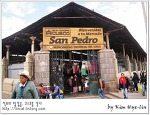 [적묘의 페루]쿠스코 산 페드로 시장,로컬 재래시장,기념품에서 돼지머리까지