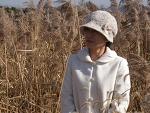 안산, 갈대습지공원의 가을 2012