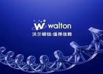 월튼 코인이란 무엇인가?