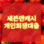 세븐앤캐시_개인회생대출_개인회생인가자 대출_대부중개업체