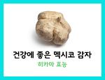 히카마 효능 건강에 좋은 멕시코 감자