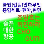 대한항공 직원들의 서울 도심 촛불집회 계획