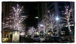 도쿄의 크리스마스 행사 - 도쿄 여행기 (Christmas in Tokyo, Tokyo)