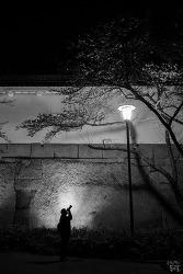 사진찍는 밤