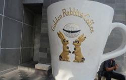 발리커피 짐바란 골든래빗 Golden Rabbit's coffee