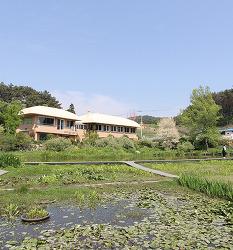 [6월 추천 여행] 태안에서 만난 초록의 선물 천리포 수목원