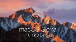 애플, macOS 시에라 10.12.3 두 번째 베타 버전 공개… 빌드 16D17a