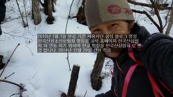 공식블로그 :한국산삼협회