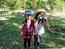 숲에서 아이들과 새 관찰 학습했어요!