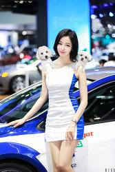 2017 서울모터쇼 쉐보레의 신해리 님 코카콜라랑