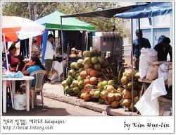 [적묘의 갈라파고스tip]장기 여행자가 화요 토요시장에 가야하는 이유  puerto ayora de santa cruz
