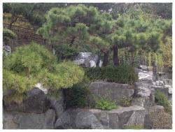 어느 봄날 한적한 오후 주변공원의 조경작품