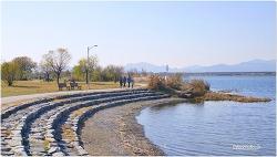낙동강변 삼락지구의 초겨울 풍경