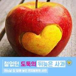 철없던 도둑의 뒤늦은 사과