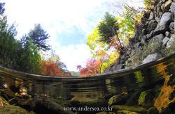 Fall into the valley water of autumn, Korea