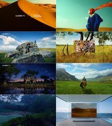 눈과 귀를 사로잡는 - LG 올레드 TV 광고