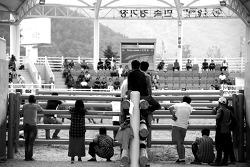 의령 상설 민속소싸움대회
