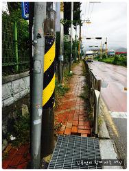 학교 앞 대로가 너무 위험한 김해 금산초등학교