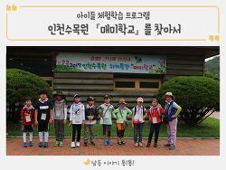 인천수목원 『매미학교』를 찾아서