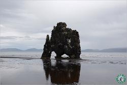 아이슬란드에서 만난 물먹는 코끼리 바위 Hvitserkur