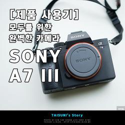 [제품 사용기] 모두를 위한 완벽한 카메라 - SONY A7 III