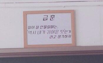 1/4분기 문자후원 결산