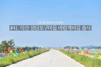 [사진을 말하다_D5500] #41. 익산 성당포구마을 바람개비길 출사