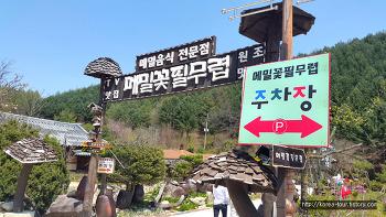 [평창여행-메밀꽃필무렵]확장했네요~^^