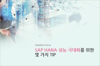 SAP HANA 성능 극대화를 위한 몇 가지 TIP