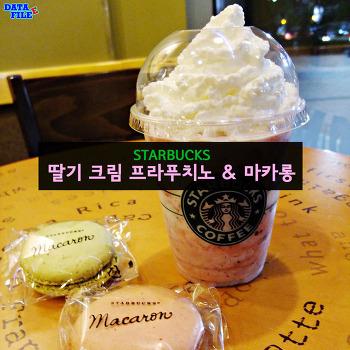딸기 크림 프라푸치노&마카롱 ♪ 스타벅스 갤러리아팰리스점