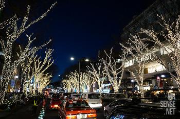 아픈 다리 이끌고 도쿄로 #1 : 아오야마, 오모테산도, 하라주쿠 그 끝에 한약