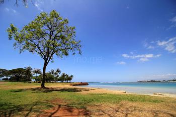 알라모아나 비치 공원. 하와이에서 일몰이 아름답다는 해변