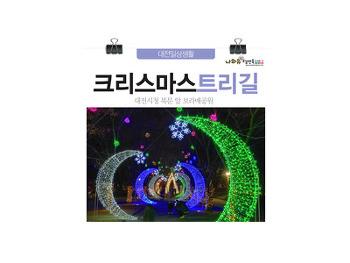 대전데이트코스 크리스마스트리길! 대전시청북문 앞 보라매공원