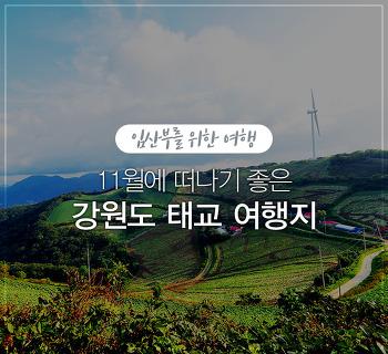 임산부의 기분 전환 플랜! 11월 강원도 태교 여행지 추천