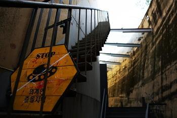 문화비축기지 - 41년의 문이 열렸다.