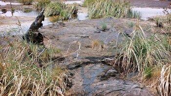 아스팔트가 샘솟는 신비의 호수를 찾아 2-2