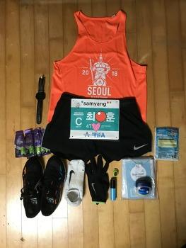 2018년 동아마라톤 후기 - 초보 마라토너의 동아마라톤 완주 후기