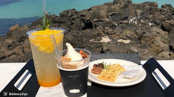 제주 핫플레이스 바다가 보이는 카페 추천