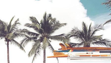 여름이 왔썸머! 세빛섬, 시원한 여름을 부탁해!
