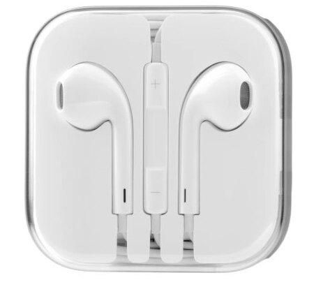 애플 이어폰 6개월 사용기