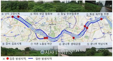 서울시, 한강수변 생태계교란식물 제거에 총력