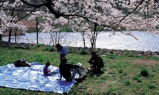 봄 맞이 야외활동을 위한 건강 팁