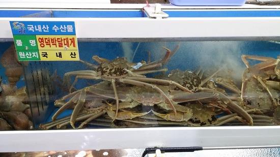대게, 홍게, 각종 해산물 택배 가능합니다.(054-734-0458, 010-7165-0458)