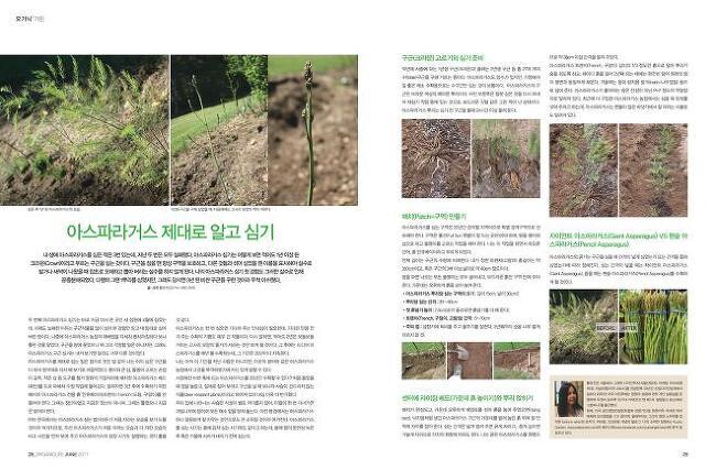 황유진 정기 기고글, 여성잡지 퀸 6월호: 아스..
